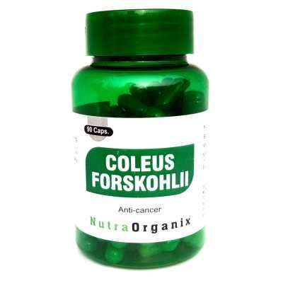Herbal Forskolin Capsules In USA - Forskolin In Bulk | Nutraorganix Profile Picture